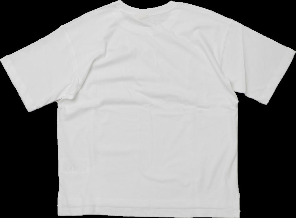 Champion Crop Top White